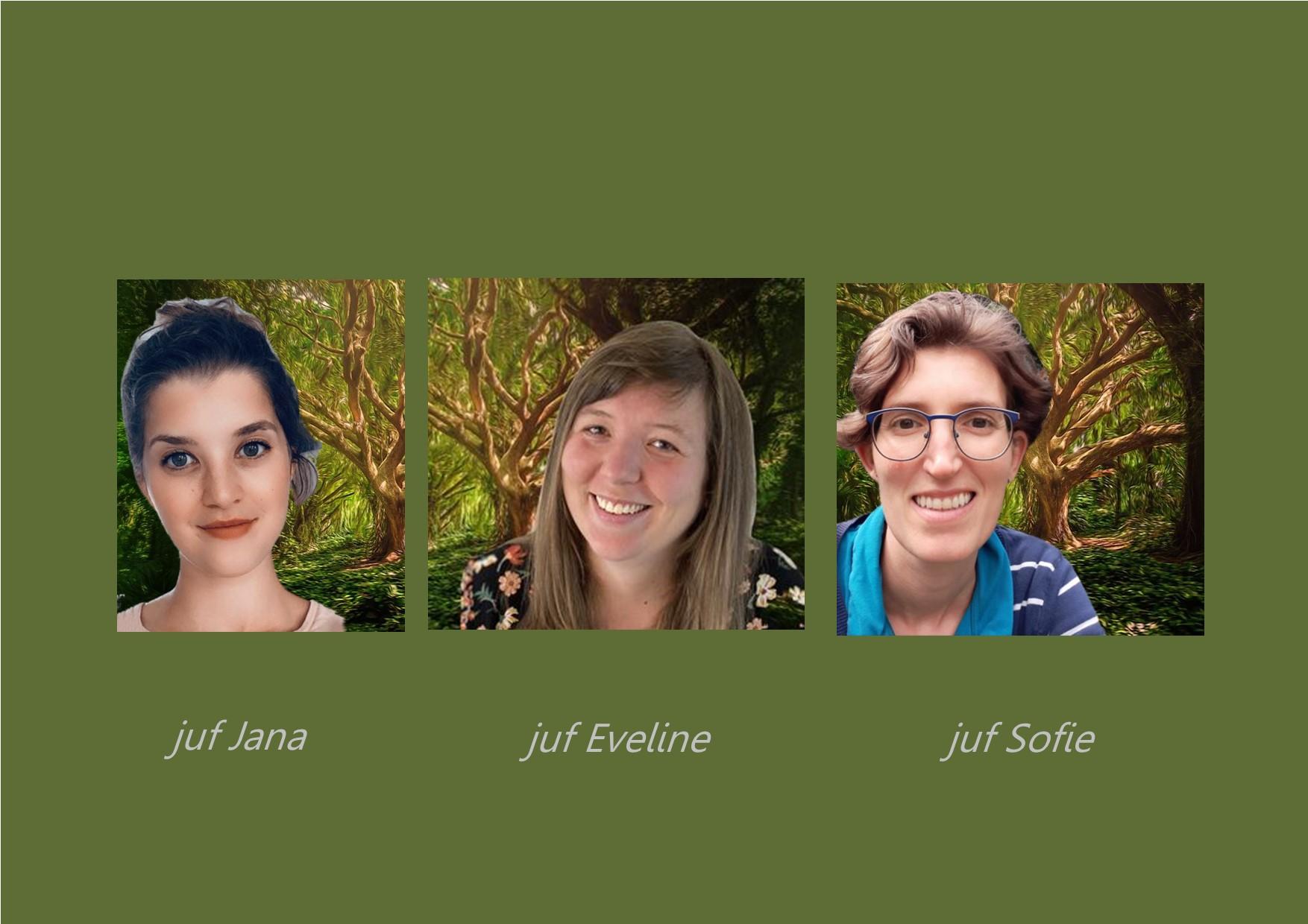 <p>2de leerjaar: juf Eveline (vanaf 1/10 juf Fleur) en juf Jana<br />co-teachers: juf Sofie en juf Isabella</p>