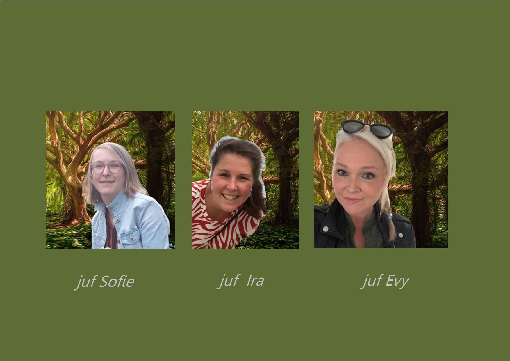 <p>berenklas: juf Sofie<br />co-teachers: juf Ira en juf Evy</p>