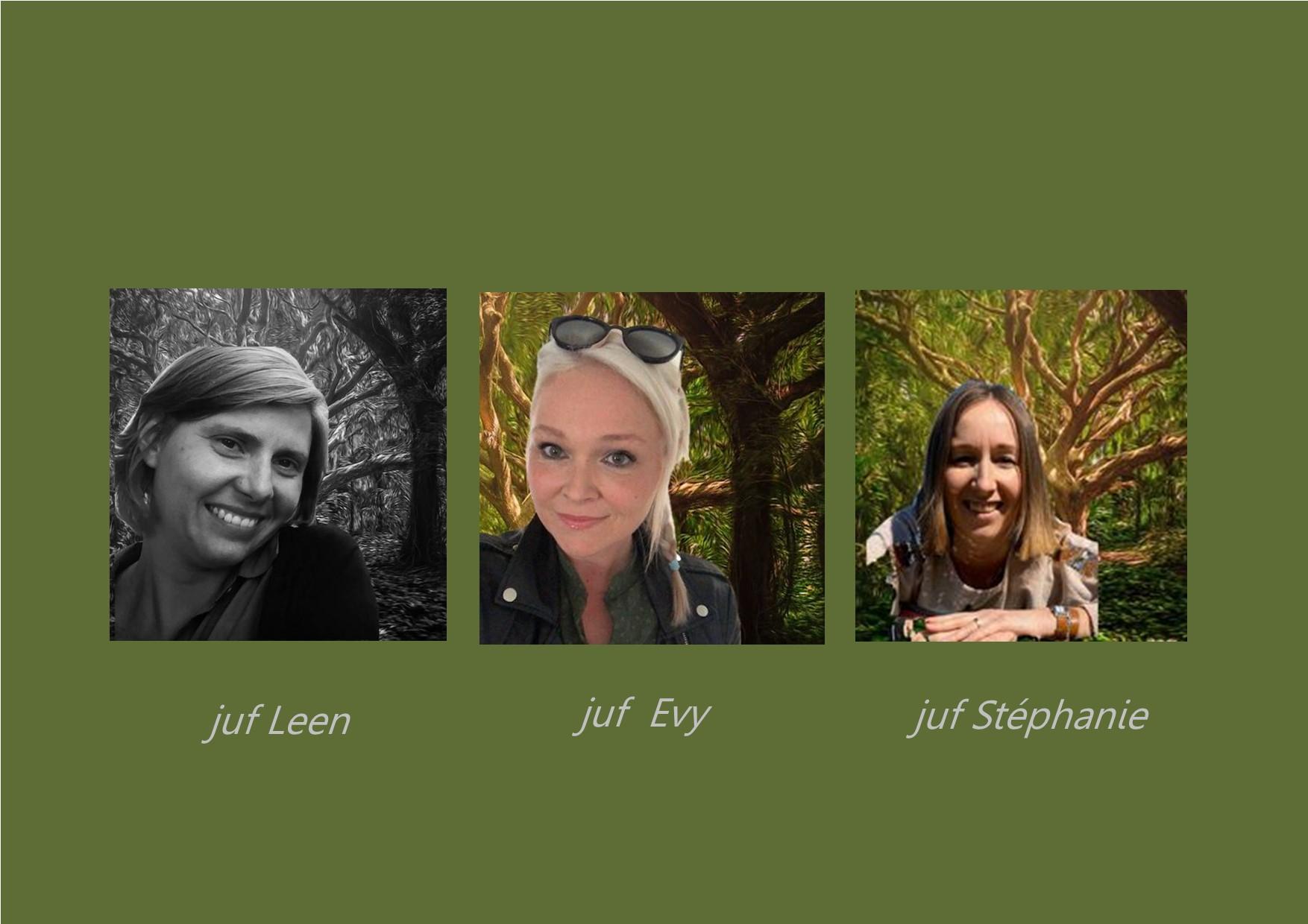 <p>vlinderklas: juf Leen, <br />kinderverzorgster: juf Stéphanie<br />co-teacher: juf Evy</p>